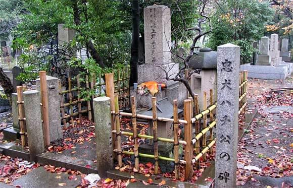 青山霊園に眠る著名人や都立霊園の墓じまい(改葬)手順