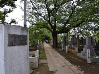 谷中霊園・戒名彫刻