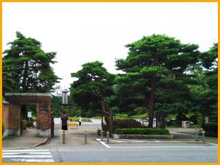 八柱霊園・戒名彫刻