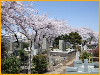 染井霊園・戒名彫刻