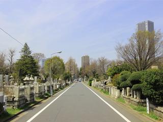 雑司ヶ谷霊園・戒名彫刻